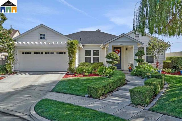 1382 Cottage Grove Ct, Tracy, CA 95377 (#40842258) :: Estates by Wendy Team