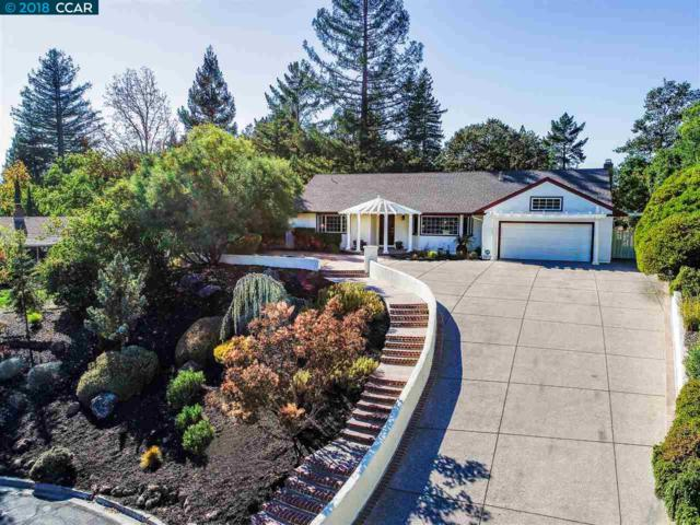144 Golden Hill Pl, Walnut Creek, CA 94596 (#40842565) :: The Lucas Group