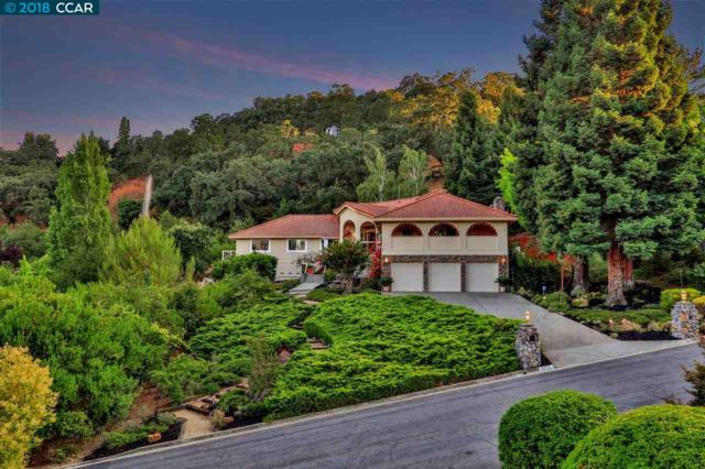 1055 Silverhill Drive, Lafayette, CA 94549 (#40842610) :: J. Rockcliff Realtors