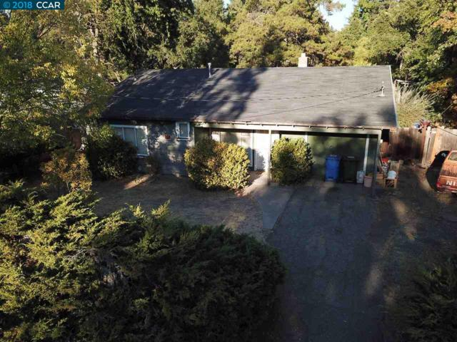 728 Laurel Dr, Walnut Creek, CA 94596 (#40842632) :: RE/MAX Blue Line