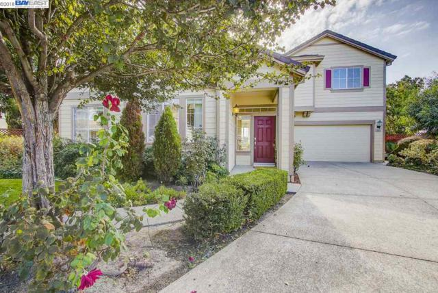 35051 Mount Palomar Ct, Fremont, CA 94555 (#40842665) :: The Grubb Company