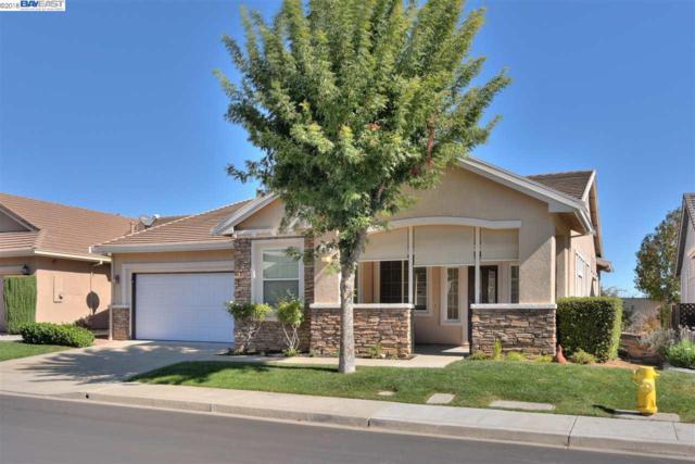 1036 Bismarck Ter, Brentwood, CA 94513 (#40842847) :: The Lucas Group