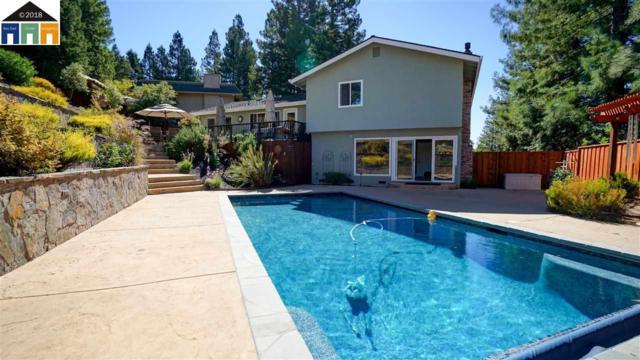 19 Ginney Ct, Danville, CA 94526 (#40842931) :: J. Rockcliff Realtors