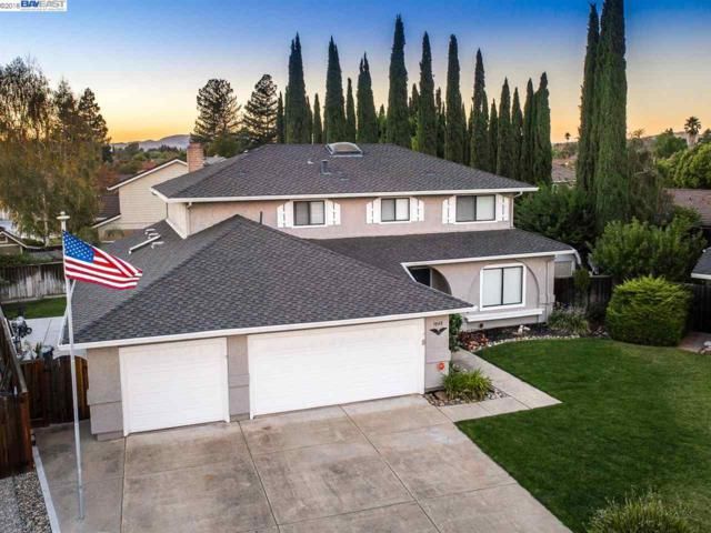 3048 Melbourne Ct, Pleasanton, CA 94588 (#40843039) :: Armario Venema Homes Real Estate Team