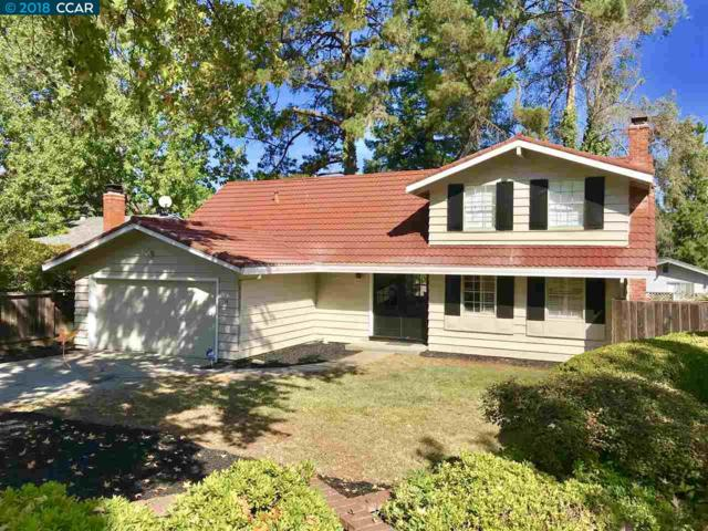 10 Greyfell Pl, Pleasant Hill, CA 94523 (#40843293) :: J. Rockcliff Realtors