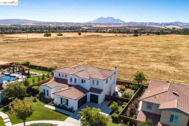 1591 Cherry Blossom Ct, Brentwood, CA 94513 (#40843329) :: The Grubb Company