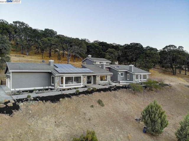 415 Leon Ct, Clayton, CA 94517 (#40843967) :: Estates by Wendy Team