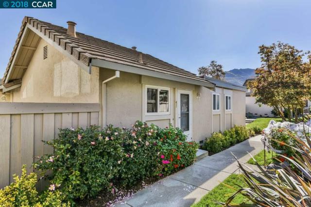 43 Long Creek Cir, Clayton, CA 94517 (#40844669) :: Estates by Wendy Team