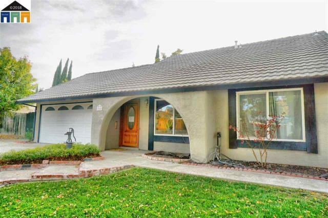 362 Hagemann, Livermore, CA 94551 (#40844918) :: Armario Venema Homes Real Estate Team