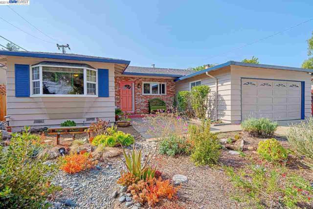 4719 Seneca Park Ave, Fremont, CA 94538 (#40845288) :: The Grubb Company