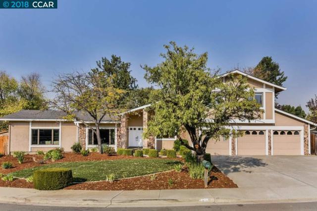 231 Southbrook Pl, Clayton, CA 94517 (#40845625) :: Blue Line Property Group