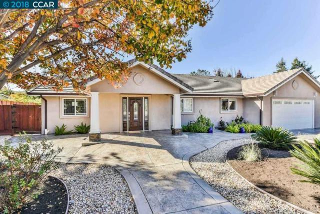 721 Pagosa Ct, Walnut Creek, CA 94597 (#40845665) :: Armario Venema Homes Real Estate Team