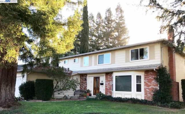 5550 Paseo Navarro, Pleasanton, CA 94566 (#40845712) :: Armario Venema Homes Real Estate Team
