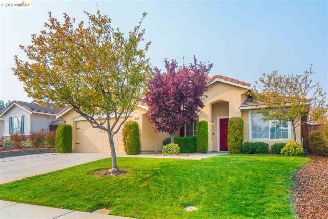 1837 Badger Pass Way, Antioch, CA 94531 (#40846288) :: Estates by Wendy Team