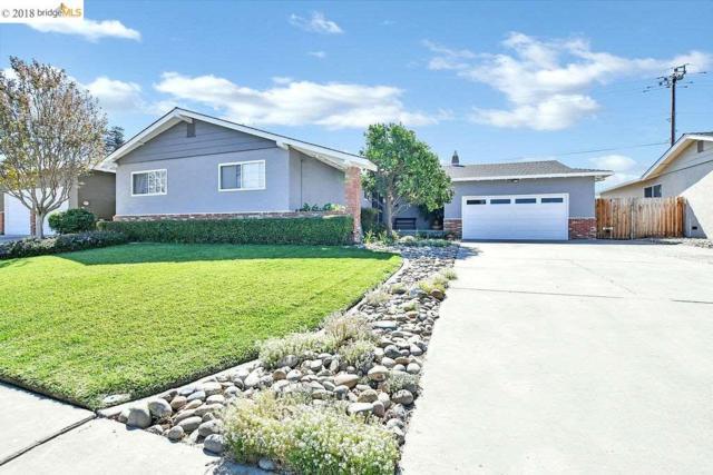 1512 Hill Drive, Antioch, CA 94509 (#40846337) :: Estates by Wendy Team