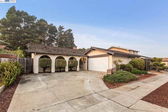 1049 Holly St, Alameda, CA 94502 (#40846396) :: Estates by Wendy Team