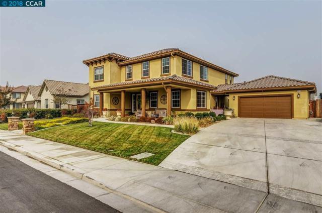 393 Havasu Ct, Brentwood, CA 94513 (#40846402) :: Estates by Wendy Team