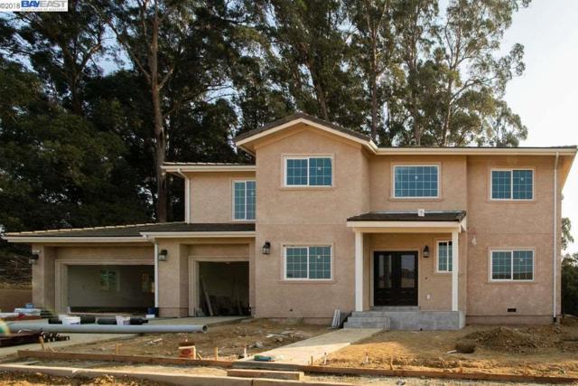 4597 Edwards Ln, Castro Valley, CA 94546 (#40846598) :: Armario Venema Homes Real Estate Team