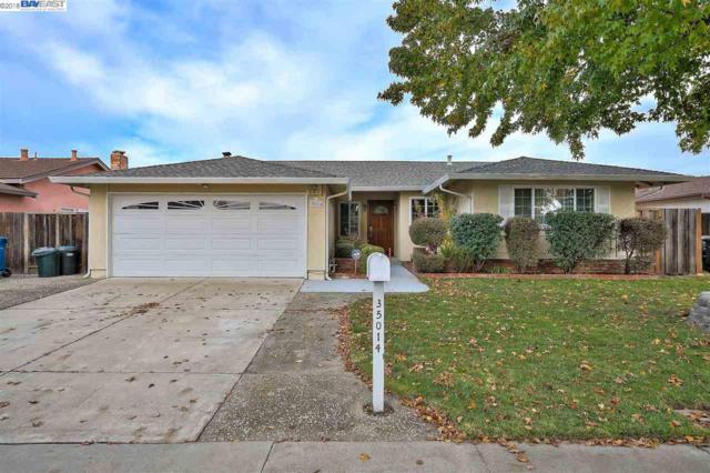 35014 Lilac Loop, Union City, CA 94587 (#40846881) :: Armario Venema Homes Real Estate Team