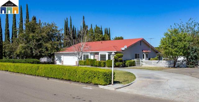 7821 Stearman Rd, Tracy, CA 95377 (#40847630) :: Armario Venema Homes Real Estate Team