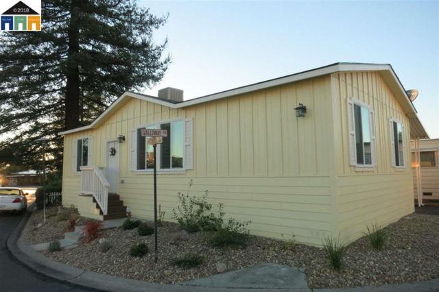 163 Galloway Dr #163, Concord, CA 94518 (#40847660) :: Armario Venema Homes Real Estate Team