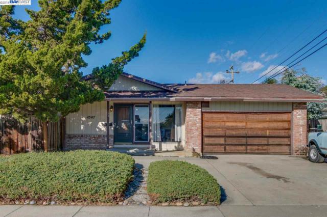 4347 Brookwood Ave, Fremont, CA 94538 (#40847664) :: Armario Venema Homes Real Estate Team