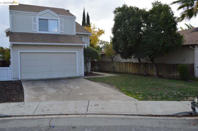 293 Cashew Ln, Oakley, CA 94561 (#40847959) :: Blue Line Property Group