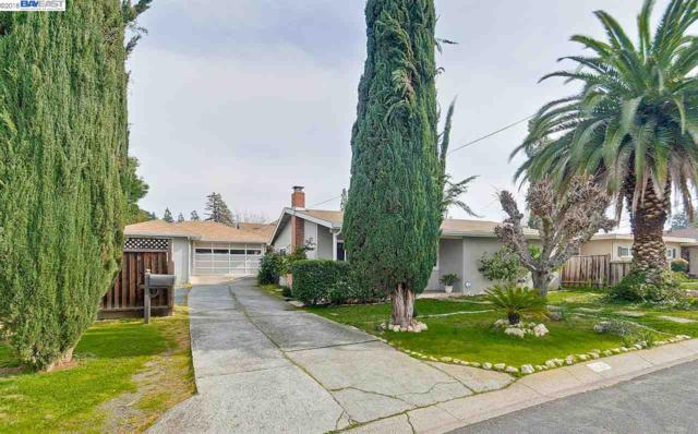 1434 Davis Ave, Concord, CA 94518 (#40848029) :: Blue Line Property Group