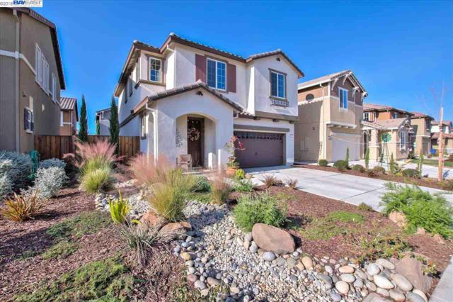 351 Coolcrest Dr, Oakley, CA 94561 (#40848284) :: Blue Line Property Group