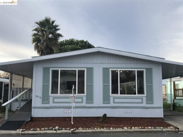 3616 Hawthorne Drive #156, Bethel Island, CA 94565 (#40848518) :: Armario Venema Homes Real Estate Team