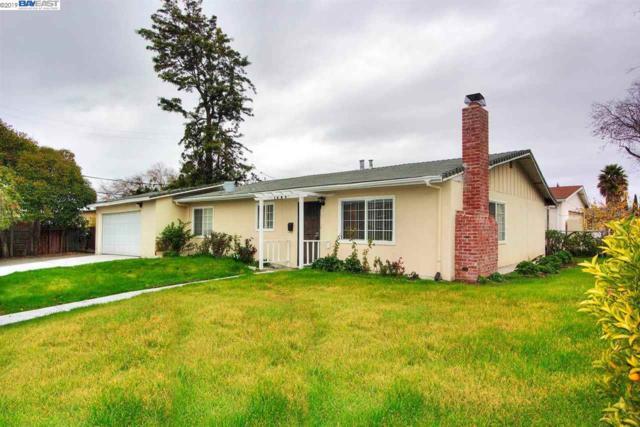1689 Canton Drive, Milpitas, CA 95035 (#40849399) :: Armario Venema Homes Real Estate Team