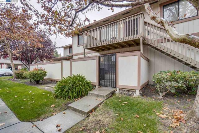 233 Entrada Plz, Union City, CA 94587 (#40849562) :: Armario Venema Homes Real Estate Team