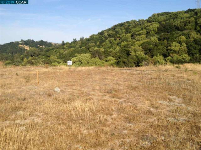 66 Boeger Ranch Road, Orinda, CA 94563 (#40849779) :: Armario Venema Homes Real Estate Team