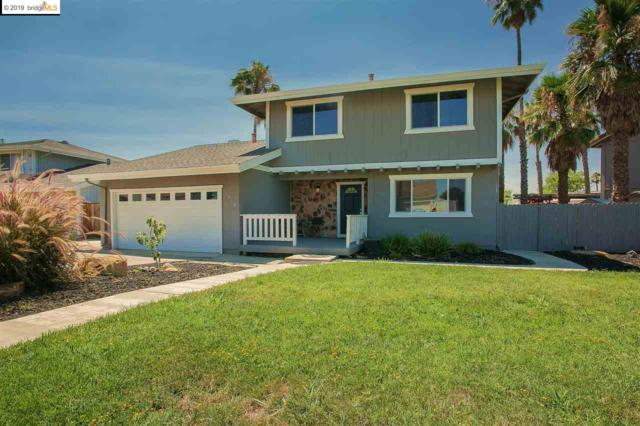 1518 Willow Lake Rd, Discovery Bay, CA 94505 (#40849824) :: Armario Venema Homes Real Estate Team