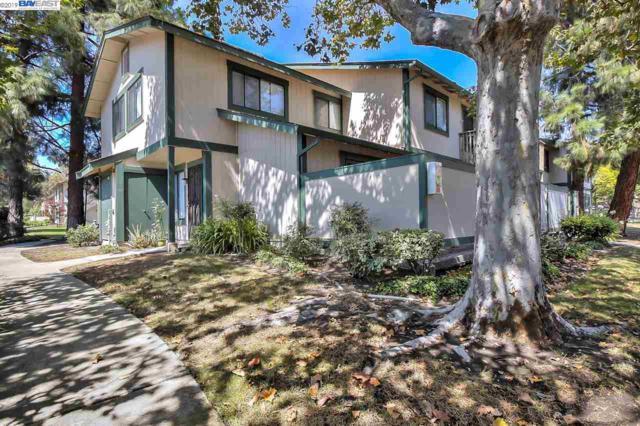 100 Camino Plz, Union City, CA 94587 (#40849960) :: Armario Venema Homes Real Estate Team