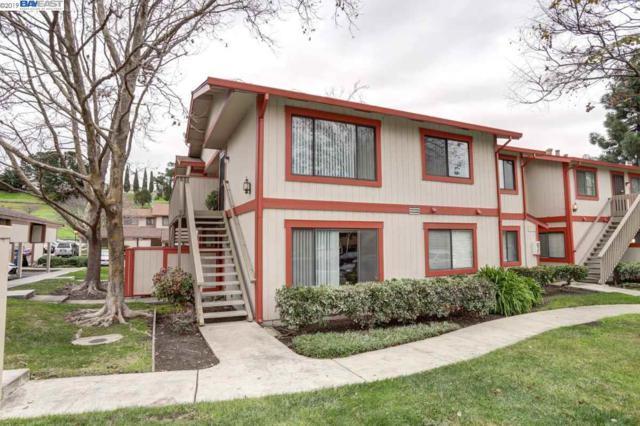 219 Entrada Plz, Union City, CA 94587 (#40849996) :: Armario Venema Homes Real Estate Team