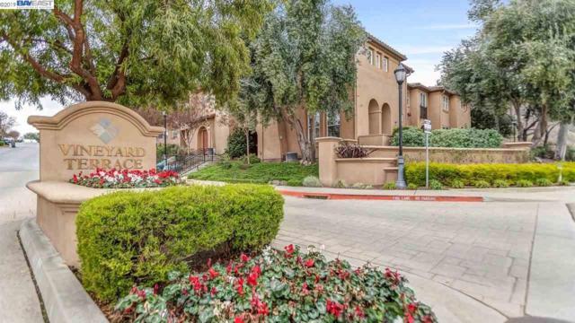 49 Meritage Cmn #203, Livermore, CA 94551 (#40850161) :: Armario Venema Homes Real Estate Team