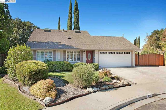 306 Turnstone Drive, Livermore, CA 94551 (#40850489) :: The Lucas Group
