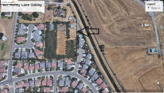 637 Honey Ln, Oakley, CA 94561 (#40850518) :: The Lucas Group