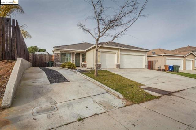 10 Terri Ct, Oakley, CA 94561 (#40850652) :: The Lucas Group