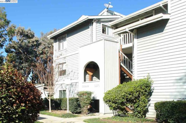 36992 Meadowbrook Cmn #204, Fremont, CA 94536 (#40851271) :: Armario Venema Homes Real Estate Team
