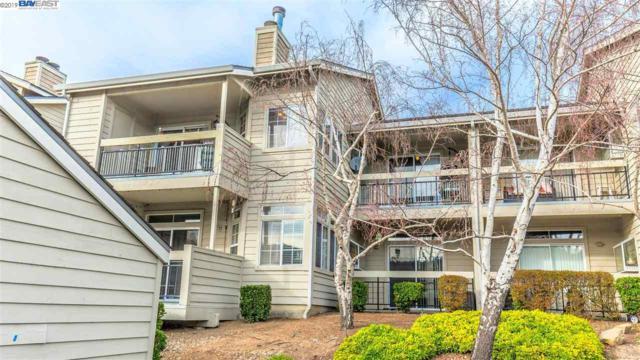 8055 Mountain View Dr D, Pleasanton, CA 94588 (#40851566) :: Armario Venema Homes Real Estate Team