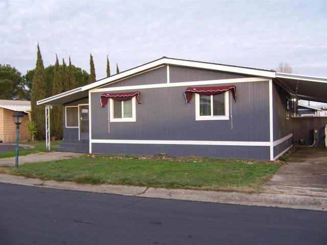 336 Alcott Ct #170, Bethel Island, CA 94511 (#40852187) :: Armario Venema Homes Real Estate Team