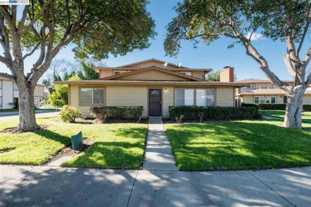 2203 Eric Ct #1, Union City, CA 94587 (#40852670) :: Armario Venema Homes Real Estate Team