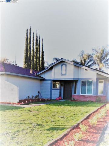 191 Brannon Dr, Tracy, CA 95376 (#40852672) :: Armario Venema Homes Real Estate Team