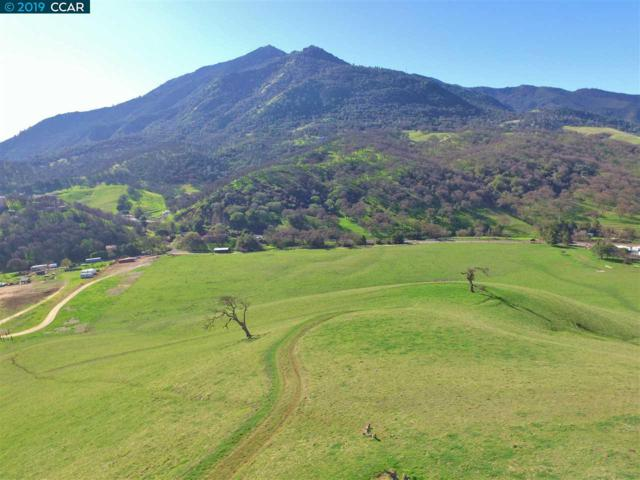 8925 Marsh Creek Rd, Clayton, CA 94517 (#40852797) :: Blue Line Property Group