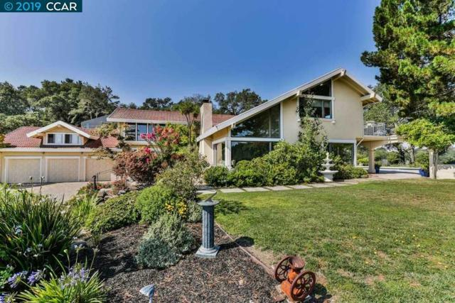 1085 Martino Rd, Lafayette, CA 94549 (#40852848) :: Armario Venema Homes Real Estate Team