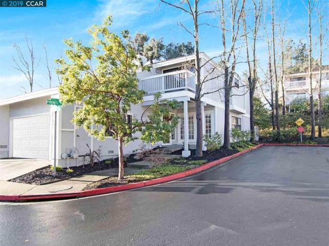 1568 Pyrenees Place, Walnut Creek, CA 94598 (#40852973) :: Armario Venema Homes Real Estate Team