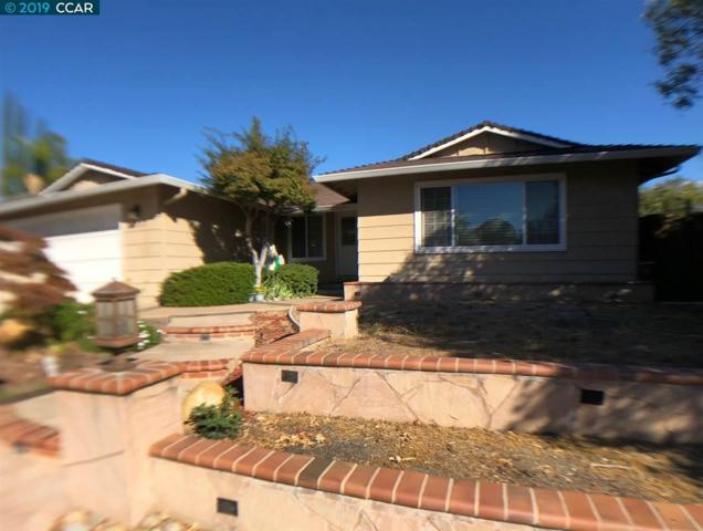 1737 Endriss Dr, Martinez, CA 94553 (#40853255) :: Blue Line Property Group