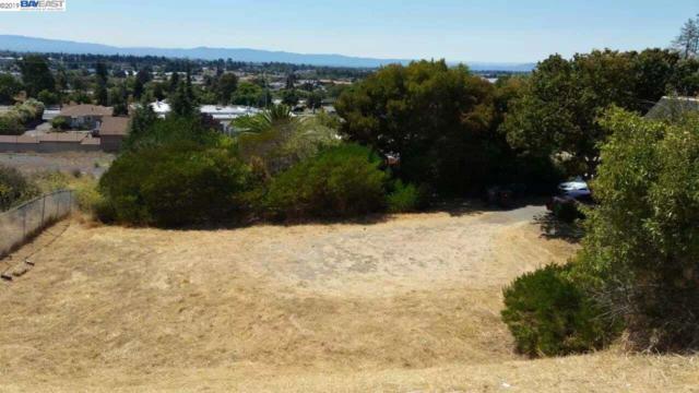 16222 Lindview Dr, San Leandro, CA 94578 (#40853335) :: Armario Venema Homes Real Estate Team
